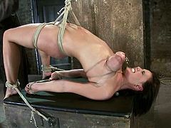 Hot chick lies on a wooden chest being tied up. She also gets her hot tits twisted with ropes so that they become maroon.