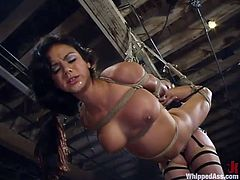 Curvy brunette gets suspended and fucked with a strapon in a basement
