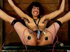 Kinky brunette girl gets tied up and humiliated by a blonde girl. Bianca also gets her pussy tortured with electro dildo by stunning Lorelei Lee.