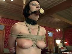 Naughty brunette chick gets tied up and blindfolded. Later on she rides huge dildo and sucks big hard cock.