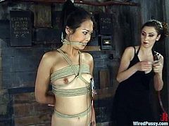 The Asian girl Nyomi Zen is getting totally tortured and toyed in this bondage lesbian session with rope and gag ball fun.