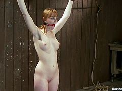 Sexy redhead babe gets tied up and gagged. Then the guy fixes clothespins to her body and toys her vagina with a vibrator.