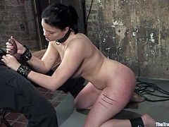 Curvaceous brunette chick gets tied up and then she gives an amazing blowjob to her master. Later on she gets her ass and tits whipped painfully.