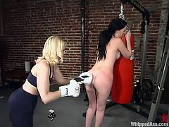 What is happening in here is something hot and strange. Paige Richards and Cowgirl are practicing their boxing skills in a hot BDSM.