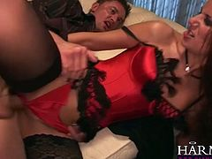 Seductive brunette bitch wearing sexy red lingerie and black stockings blows meaty dong and gets her punani fucked hard missionary style from behind.