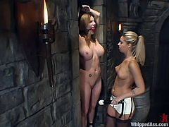 Nice Hollie Stevens gets toyed deep by hot Jenni Lee