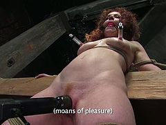Slutty redhead chick Rita Seagrave gets bound and tormented in a basement and likes it very much. Some dude beats her and then slams her pussy with a dildo.