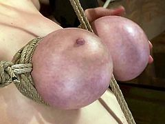 The boobs of Katie Kox are going to be totally purple with lack of blood as they are massively tied with ropes in this bondage video.
