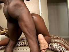 Porner Premium brings you an amazing free porn video where you can see how a busty ebony bitch gets her tight ass blasted deep and hard into a spectacular orgasm.
