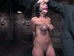 What a charming and divine siren Charley Chase is! She gets bondaged and tied up and it's going to be fucking wild! Damn!