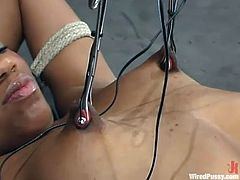 Ebony hottie Sydnee Capri is having BDSM fun in a basement. She gets bound and fucked by a sex machine and enjoys it much.