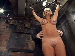 Who would guess that such a lovely and smoking hot blond babe would love it in pain. Babe gets naked and gets suspended, being hogtied!