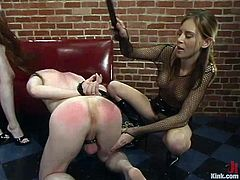 Two amazing girls whip and humiliate some guy