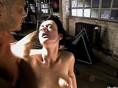 Melissa Lauren makes Nacho Vidal happy by sucking his sturdy boner before she gets fucked in her ass