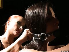 Brunette Betty Stylle with big tits having lesbian fun with lesbian Katy Parker