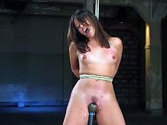 Beautiful brown-haired girl Thea Marie strips and allows some guy bind her. Then the man attaches a dildo to Thea's vag and watches the girl getting her pussy rubbed.
