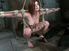 Lexi Brooks gets tied up and tortured with clothespins and the mousetrap. In addition she also gets toyed with a vibrator.