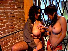Alexis Amore and Sienna West are two of the sexiest chicks you will ever see. They make each other cum pretty quickly caressing each other's pussies orally. Then they fuck each other with dildo.