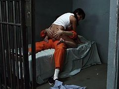 Life in prison for a hottie can be hard, especially if she's a horny bitch that didn't had action for a while. The guy was passing by with some books when she grabbed his cock, she jerked and sucked his dick through the bars and then the dude got inside. He fucked her the way she deserved it. Enjoy.