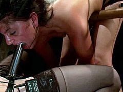 How about some BDSM femdom for your boring evening? Here are Bobbi Starr and Isis Love, humiliating that sexy honey, who loves it in pain.