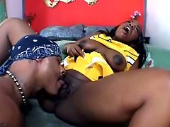 Salacious black bitch Mocha Delight gives a blowjob to her man and allows him to drive his BBC into her meaty cunt. They fuck in the reverse cowgirl and other positions and seem to be unable to stop.