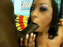 Precious ebony hottie gets treated to a gigantic black sausage. She goes wild as her man penetrates her pussy deeper than ever in hot poses.