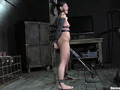 Stunning brunette girl gets tied up and blindfolded. After that her master whips her feet and ass. She also gets her ass drilled by the fucking machine.