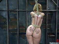 Darling strips her clothes off and gets tied up. Then she also gets her tits tortured and pussy toyed in a wooden barn.