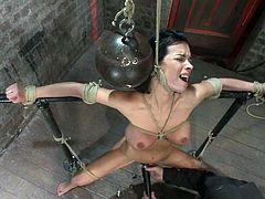 Horny brunette chick gets hog tied and then the guy fixes claws to her nipples. She also gets her choked.