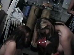 Are you looking for something spice and hot? You are right here to be pleased with one another provocative BDSM sex movie featuring several nude sluts getting punished.