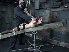 Gorgeous brownie in stockings gets tied up by a guy in a mask. Then she gives a blowjob to her master and gets her tits clothespinned. Later on she also gets her pussy drilled with big dildo.