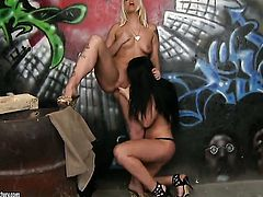 Brunette Larissa Dee licking Simony Diamonds wet hole like it aint no thing in lesbian action