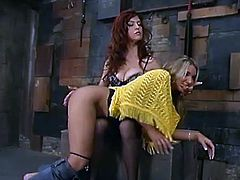 Adorable blonde babe gets humiliated by her redhead mistress. She licks Sasha's toes and then gets toyed with a strap-on in a doggystyle pose.