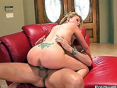 Angelic porn girl Sindee Jennings cant resist the desire to take heavy cumshot on her face