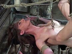 Cute brown-haired girl Kendra James is having fun with some man in a basement. The man shackles the chick and attaches pegs to her pussy before smashing it with a dildo.