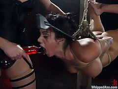 Beautiful and sexy girls Nadia Styles and Nikki Nievez are having fun in a jail. Nadia binds and beats Nikki and then smashes her astonishing pussy with a strapon.
