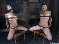 THis is a very insane BDSM session with two gorgeous blondies Jade Marxxx and Jenni Lee. They get tied up hard and tortured in a very refined way!