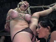 Sandra Romain and Sara Scott are having BDSM fun in a basement. The brunette ties the blonde bitch up and plays with her meaty cunt before pounding it with a dildo.