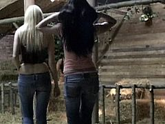 Class 3Some brings you an amazing free porn video where you can see how a wild blonde and a vicious brunette start a hot threesome while assuming very hot poses.