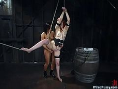 Calico is having BDSM fun with Sandra Romain in a basement. She allows Sandra to tie her up and then enjoys having a hook in her ass and wires in her snatch.