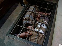 What an amazing and hardcore porn video this is! Two babes are blindfolded and tied up and they don't yet know who is going to torture them.