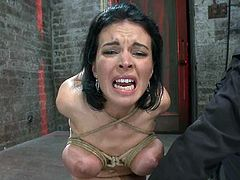 Charming brunette siren is experiencing some pain