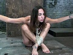 Pretty brown-haired chick Amber Rayne gets tied up by some guy in a basement. Then the man stuffs Amber's vag with a dildo and toys her pink cave to orgasm.