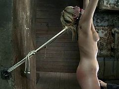 Horny blonde girl gets tied up and gagged by a couple. Later on she also gets her vagina toyed. This chick cums massively several times in a row.