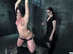 Claire Adams and Raina Verene are getting naughty in a basement. The dominatrix binds her slave and attaches clothespegs to her body before rubbing her cunt with a toy.