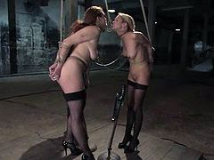 This juicy and desirable siren Rain DeGrey and her friend Sabrina Fox are going to share the moments of pain together. Such a steaming hot BDSM!