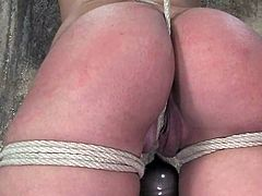 Isis Love moans loudly while getting her snatch toyed in BDSM vid