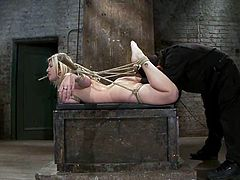 Blonde chick with big boobs gets tied up by Isis Love. After that she gets her mouth pinched with the mousetrap. Later on she also gets her wet pussy toyed.