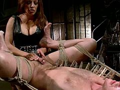 Brian Bonds is getting naughty with Felony and her assistant. The women tie the stud up and attach leads to his nipples before smashing his ass with a strapon.