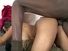 Cheep tempting exotic looking hooker with juicy tits and big bouncing ass screams while tall black client is drilling her snatch with unbelievable long stiff cock in doggy style position.